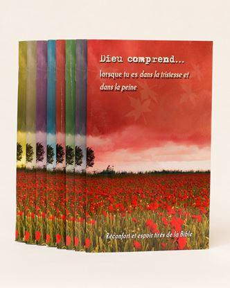 Picture of Dieu comprend  (8 Livrets)