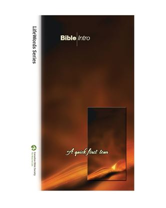 Picture of Bible Intro – LifeWords Series