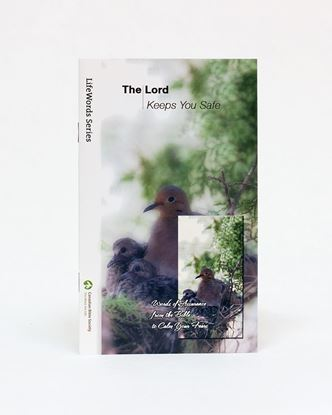 Picture of The Lord Keeps You Safe – LifeWords Series