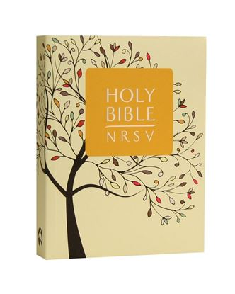 Picture of NRSV Bible Catholic Edition