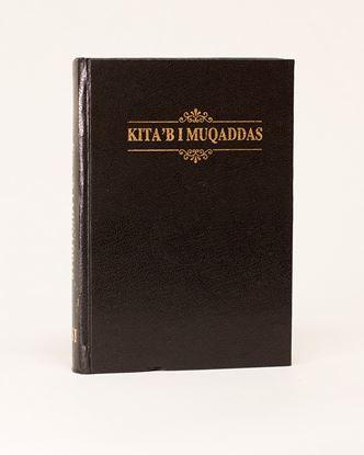 Picture of Urdu Bible (Roman Script)
