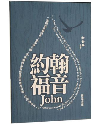 Picture of Chinese Gospel of John, Large Print RCU
