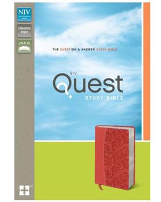 Picture of NIV Quest Study Bible (Coral)