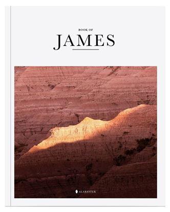 Picture of Alabaster Book of James (NLT)